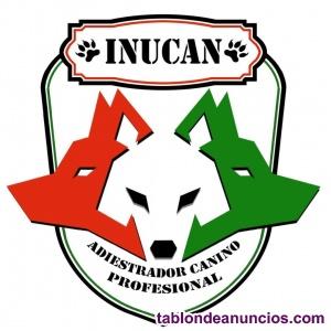 InuCan Adiestrador Canino Profesional