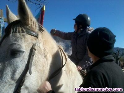Jornada introducción a las intervenciones asistidas con caballos