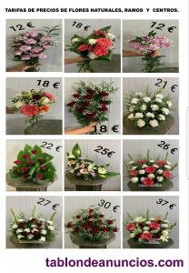 Se venden Flores, Ramos y Centros