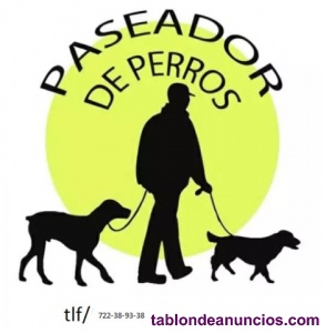 Transporte de perros y gatos