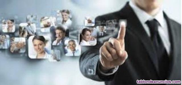 Clases Online, plataforma Moodle, creación de contenidos. Consultoría
