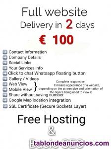 Entrega completa del sitio web  en 2 días   .. € 100