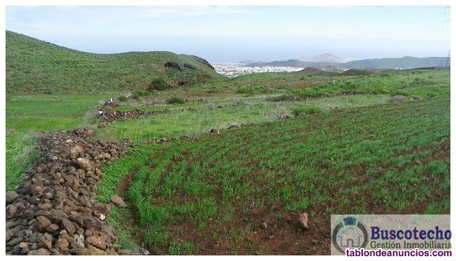 Terreno, 2800 m2, No urbanizable, planta 0,  Se ve