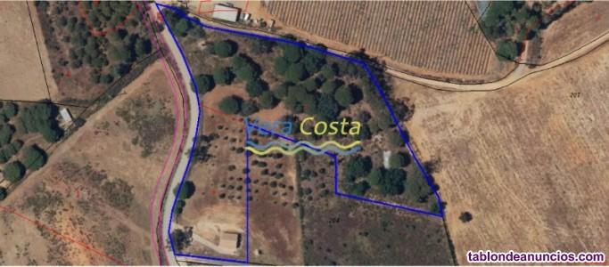 Estupenda parcela de 12.700m2 con AGUA en Villabla
