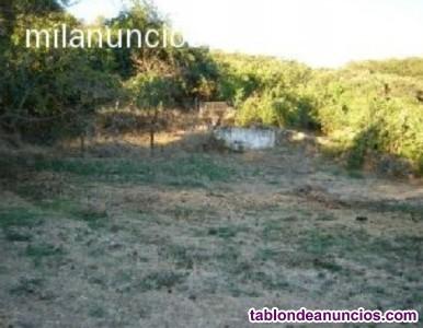 Preciosa parcela sita en Cabeza la Vaca (Badajoz)
