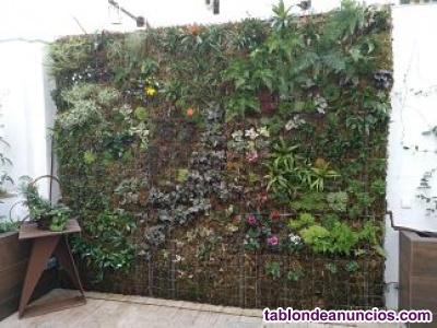 ### instalación de jardines verticales ###