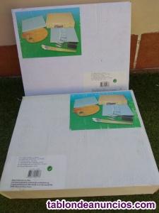 2 maletines pintura-material artistico y 4 lienzos