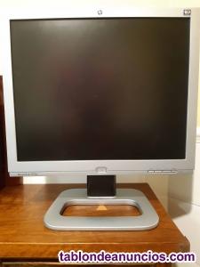 Monitor HP Pavillon f1904, condensadores
