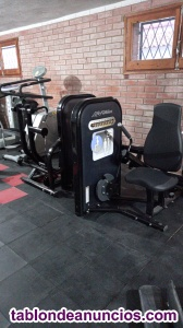 Maquina para triceps life fitness