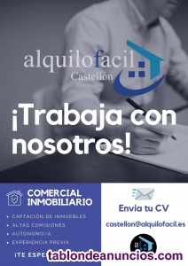 Comercial inmobiliario castellón