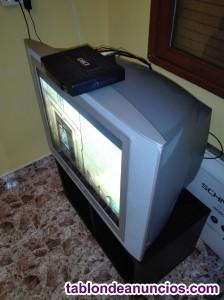 Vendo  televisor convencional philips .