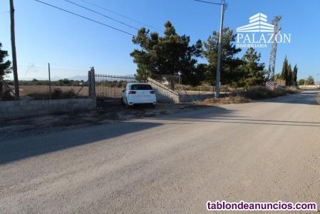 Ref: 0188. Parcela rústica en venta en Crevillente (Alicante)