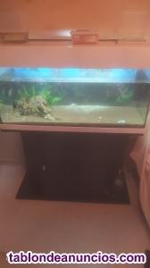 Acuario de 200L marca Eheim con mesa de acuario y filtro exterior marca Eheim.