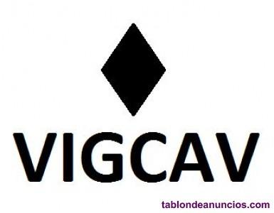 Centro de investigacion empresarial vigcav