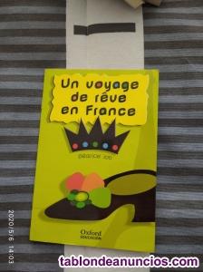 UN VOYAGE DE RÊVE EN FRANCE - Béatrice Job