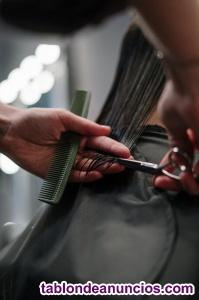 Se vende o traspasa bonita peluquería en ALAVA