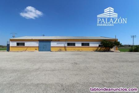 Ref: 0313. Nave en venta en San Fulgencio (Alicante)