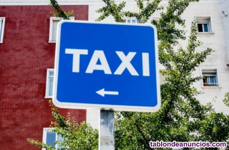 Conductor Taxi LUNES