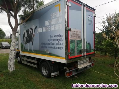 Tarjeta de transporte de pesado y camión frigorifico iveco