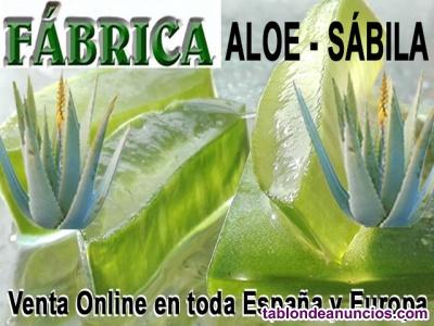 Fábrica Aloe vera - Sábila Necesita, busca en toda España nuevos distribuidores,