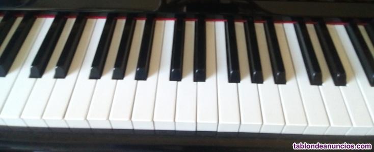 Profesora de Música a Domicilio
