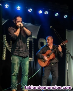 Clases de Armonica online. Curso de Armonica. Blues, rock, country.