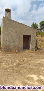 Plantación almendros y casa de piedra