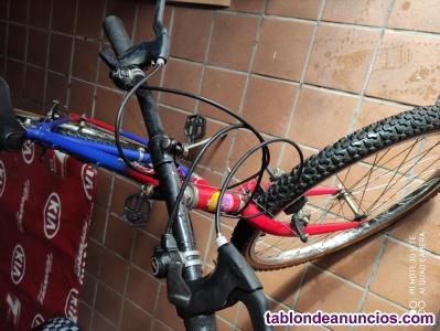 Oportunidad liquido dos mountain bike mentor centauro