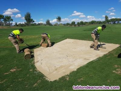 Jardinero para mantenimiento de un campo de golf