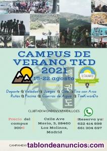 Campamento de Verano con temática de Artes Marciales TKD