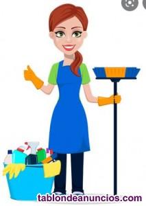 Limpiadora a domicilo