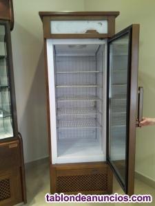 Se vende a buen precio armario expositor-congelador