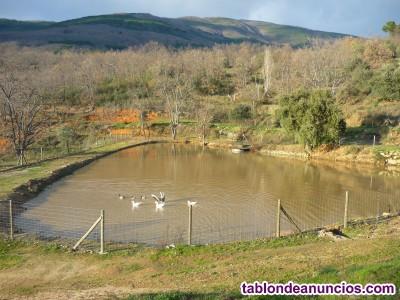 Venta de albergue en la Sierra de Gredos