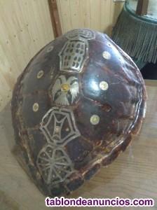 Caparazón de tortuga decorado
