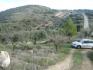 Fotos del anuncio: 186 olivos,48 almendros y monte bajo en Íllora Alcachofares Matagallares