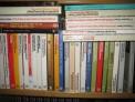34 novelas de fernando vizcaíno casas