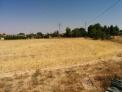Fotos del anuncio: Terreno a 3 Km de Albacete