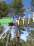 Parque de aventuras en los arboles