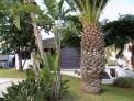 Fotos del anuncio: Estupendo Chalet de Lujo en Barranco Hondo