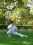 Fotos del anuncio: Profesor tai chi chi kung yan chen