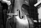 Clases de lenguaje musical, armonía, contrabajo, guitarra, combo.