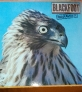 Fotos del anuncio: Lp vinilo blackfoot marauder