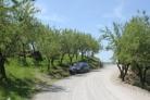 Fotos del anuncio: Finca de almendros valle de lecrin