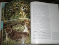 Fotos del anuncio: Enciclopedia salvat de la fauna felix rodrigez de la fuente