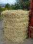 Fotos del anuncio: Vendo hierba seca