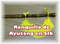 Fotos del anuncio: Vendo ronquillo de ayucong eucola en si bemol para gaita