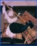 Fotos del anuncio: Vendo gaita de fresno con vestido en terciopelo azul