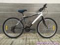 Bicicleta tipo holandesa