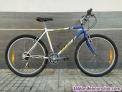 Bicicleta bh sunny