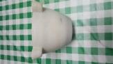 Fotos del anuncio: Mortero almirez de marmol blanco macael